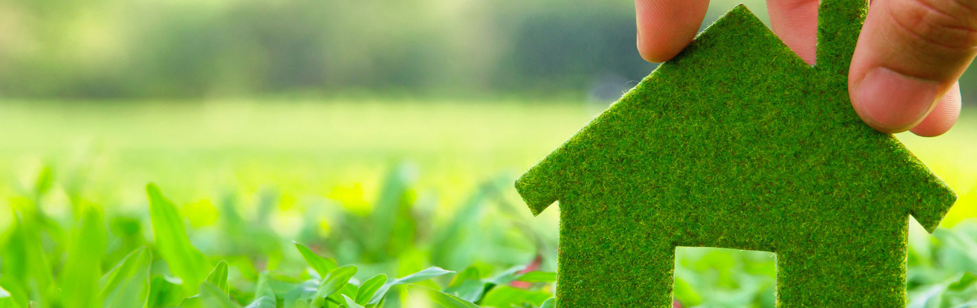 7 Simple Ways To Convert Your Home To A Green Home