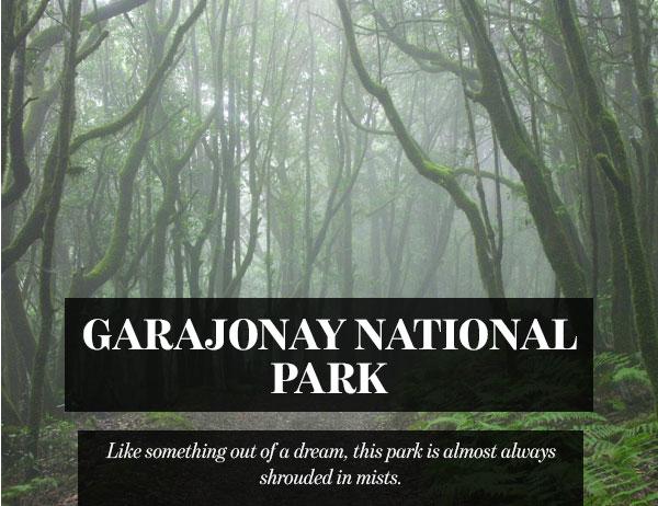 Garajonay National Park, Canary Islands