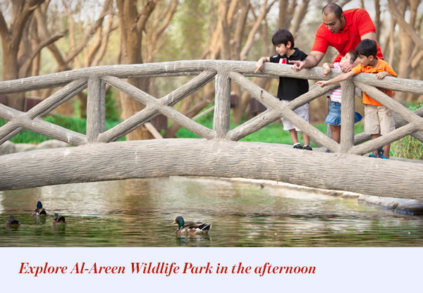 Explore Al-Areen Wildlife Park in the afternoon