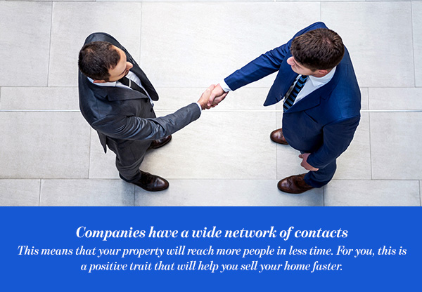 Companies have a wide network of contacts