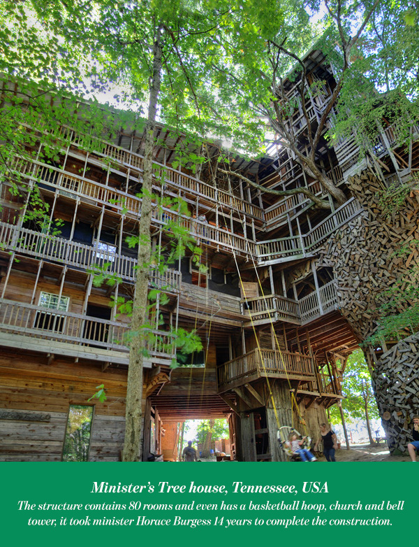 Minister's Tree house, Tennessee, USA