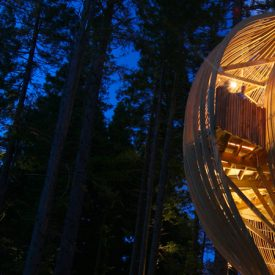Unique Architecture: The Most Amazing Tree houses Around The World
