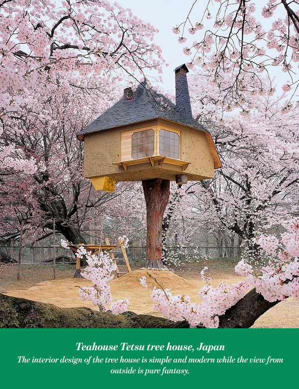 Teahouse Tetsu tree house, Japan