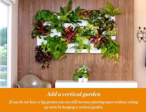 Add a vertical garden