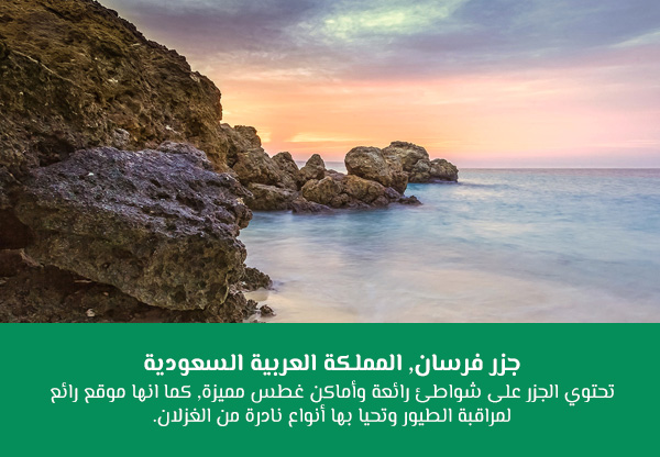 جزر فرسان, المملكة العربية السعودية