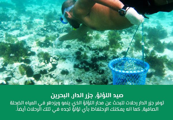 صيد اللؤلؤ, جزر الدار, البحرين
