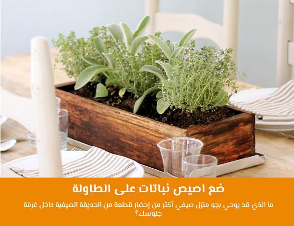 ضع اصيص نباتات على الطاولة