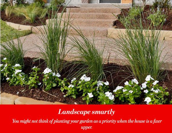 Landscape smartly
