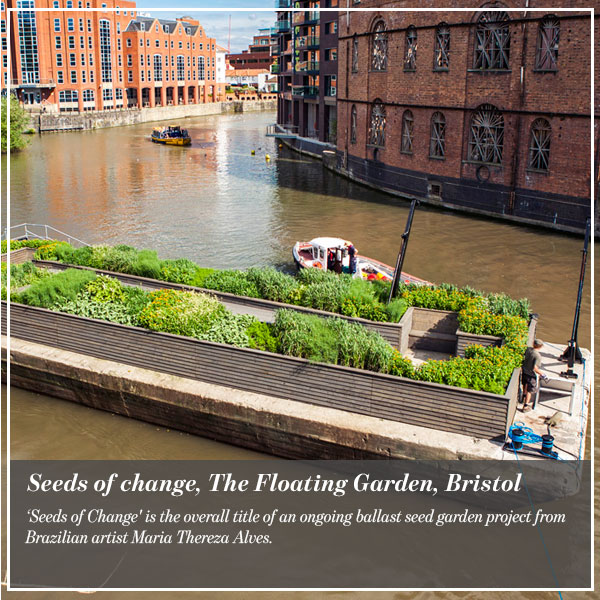 Seeds of change, The Floating Garden, Bristol