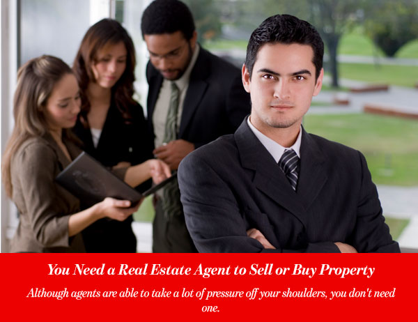 You Need a Real Estate Agent to Sell or Buy Property