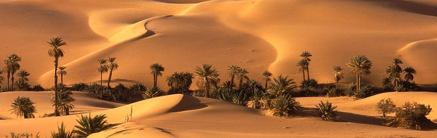 تعرف على 5 من أفضل مواقع مراقبة النجوم فى دول الخليج العربى