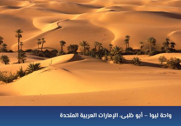 واحة ليوا – أبو ظبى، الإمارات العربية المتحدة