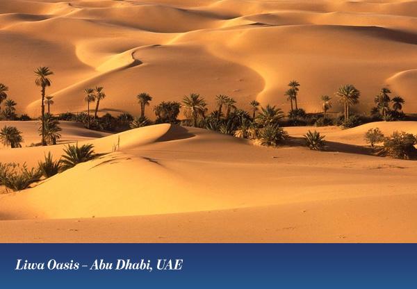 Liwa Oasis – Abu Dhabi, UAE