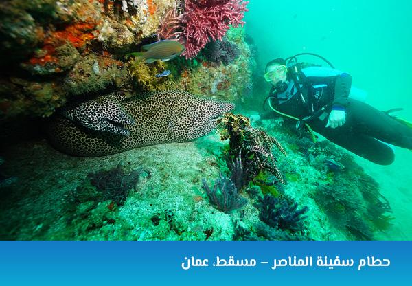 حطام سفينة المناصر – مسقط، عمان