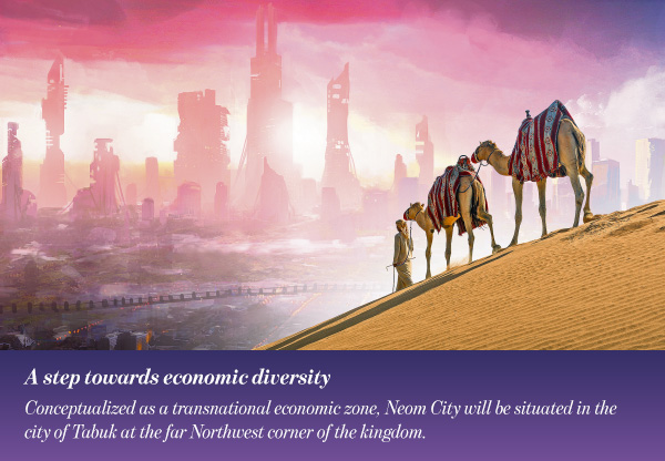 A step towards economic diversity