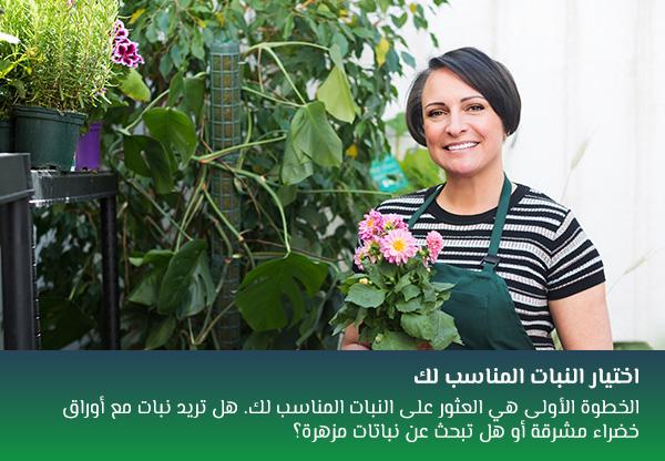 اختيار النبات المناسب لك