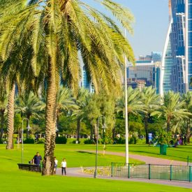 اكتشف الصفاء في أفضل المنتزهات في دبي