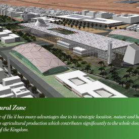 Prince Abdulaziz bin Mousaed Economic City : Between ambition and reality