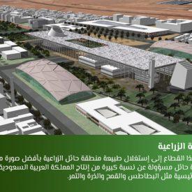 مدينة الأمير عبد العزيز بن مساعد الإقتصادية: بين الحلم والواقع
