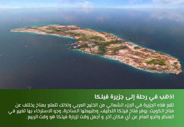 اذهب في رحلة إلى جزيرة فيلكا