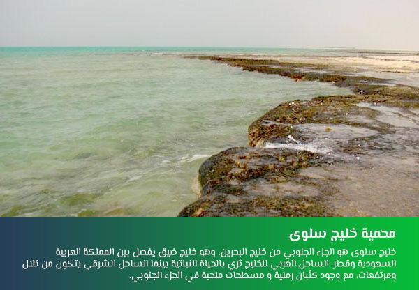 محمية خليج سلوى