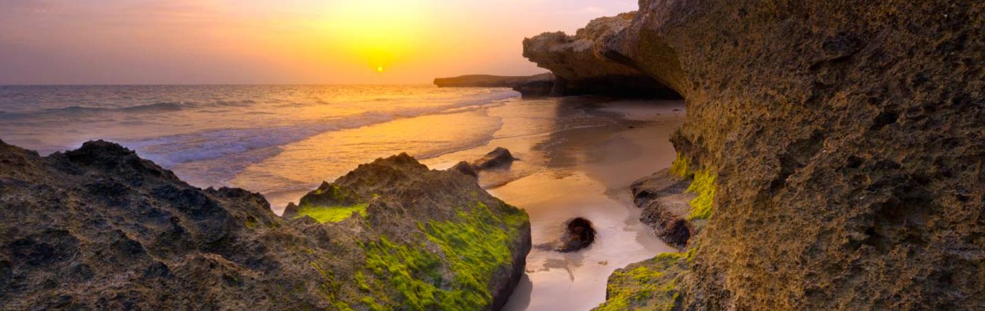 أهم المحميات الطبيعية في السعودية