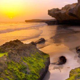 Natural Reserves in Saudi Arabia