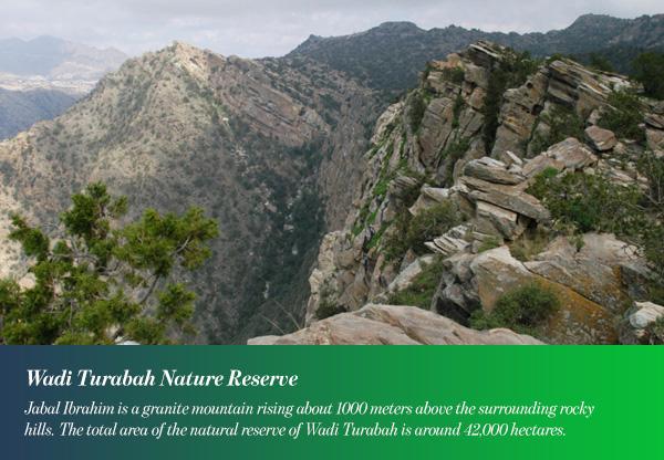 Wadi Turabah Nature Reserve