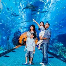 أين تذهب هذا الصيف: 5 أماكن سياحية في دبي