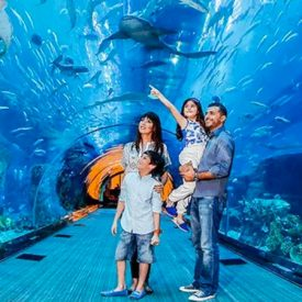 5 Tourist attractions in Dubai