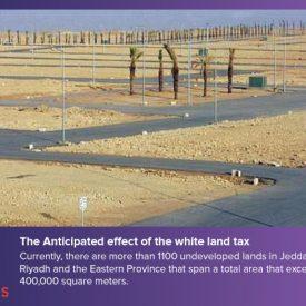 White Land Tax : How will it help revive the Saudi Arabian economy?