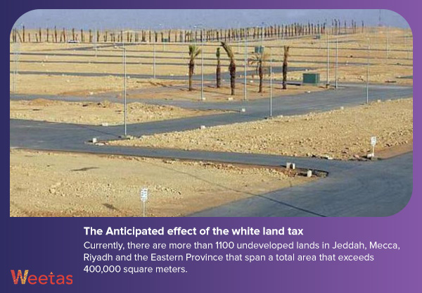 The Anticipated effect of the white land tax