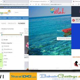 Bahrain online shopping: the best online shopping sites in Bahrain