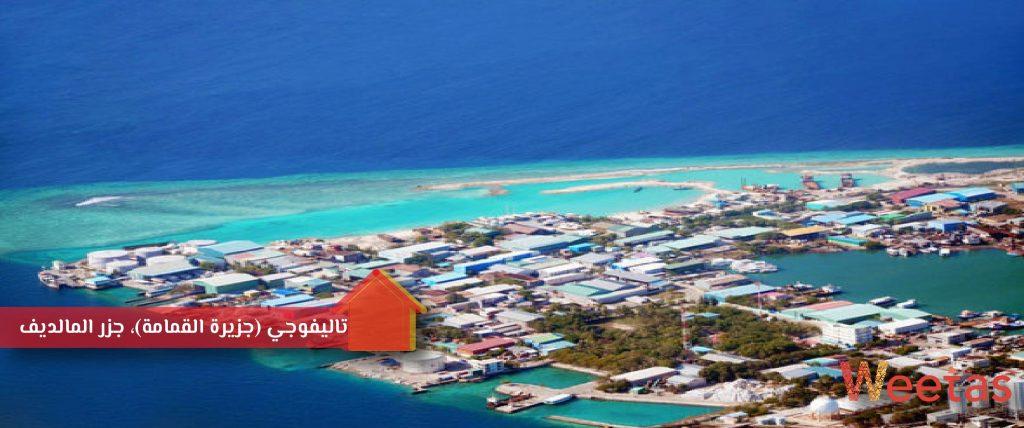 تاليفوجي (جزيرة القمامة)، جزر المالديف