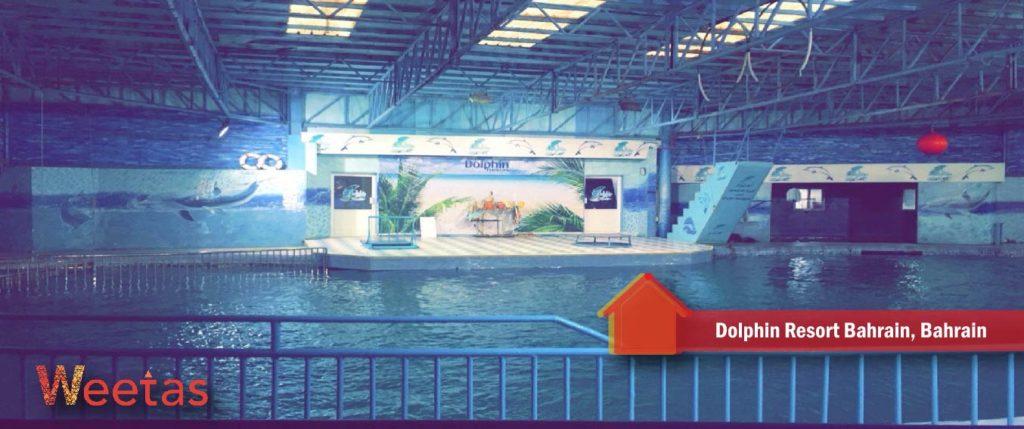 Dolphin Resort Bahrain