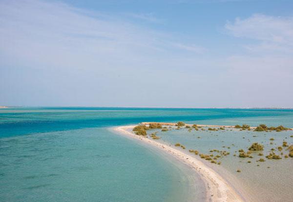 الغوص في شاطئ فرسان الكبير - أفضل الأنشطة السياحية في السعودية