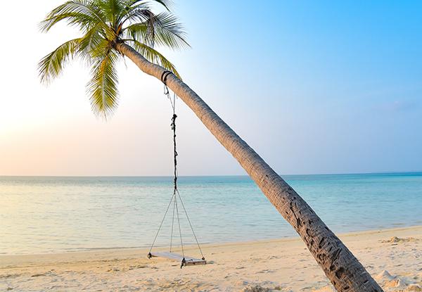 استكشف الشواطئ الرائعة - أفضل الأنشطة السياحية في السعودية