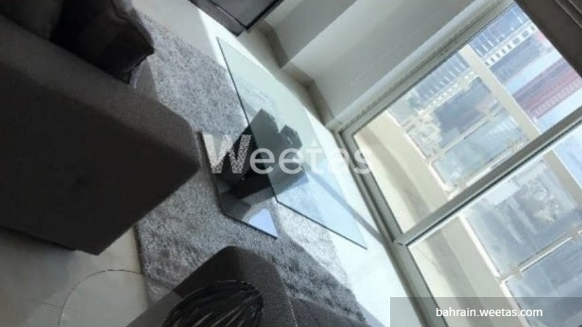 Luxury flat fully furnished with a lot of facilities