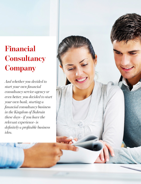 Financial Consultancy Company