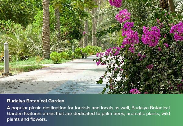 Budaiya Botanical Garden