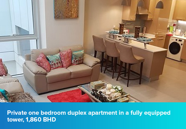 Private one bedroom duplex apartment